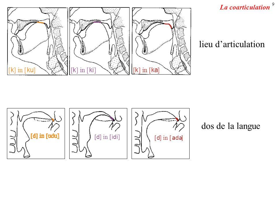 lieu d'articulation dos de la langue La coarticulation [ k ] in [ ku ]